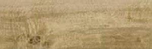 Płytka podłogowa Ceramika Limone Bosque Beige 15,5x62 cm